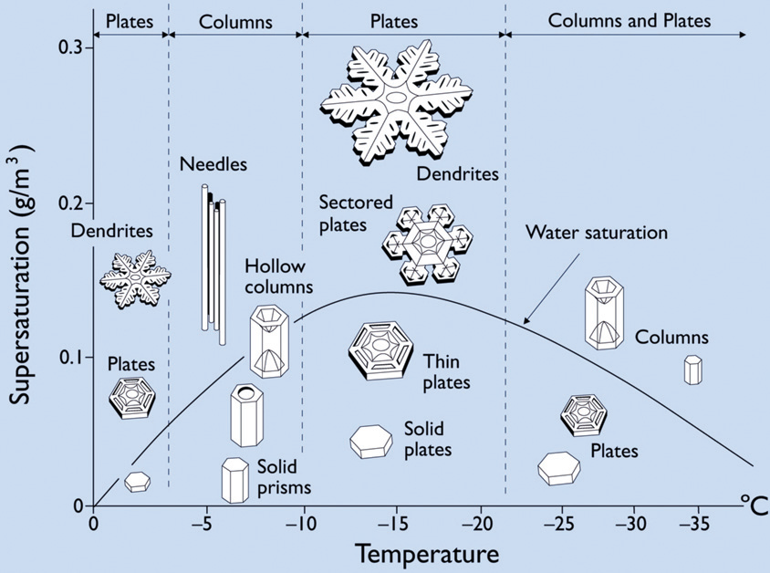 Happy Holidays plus A Bit About Snow Crystals | A Field ...