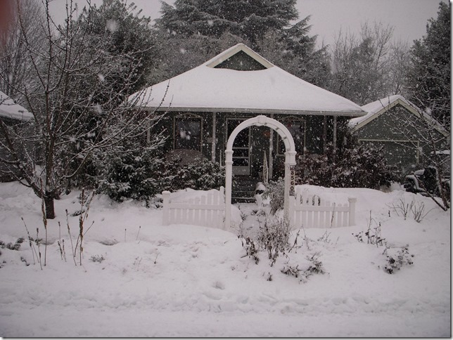 Snowstorm 01