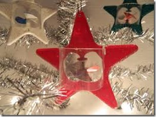 Spinny Star Ornament